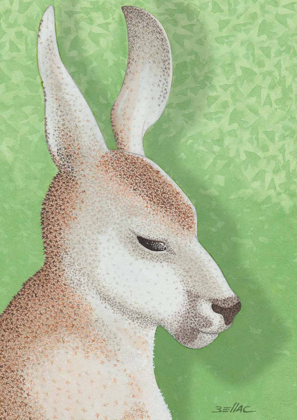 illustration aux encres de couleur - Un kangourou réalisé avec des k